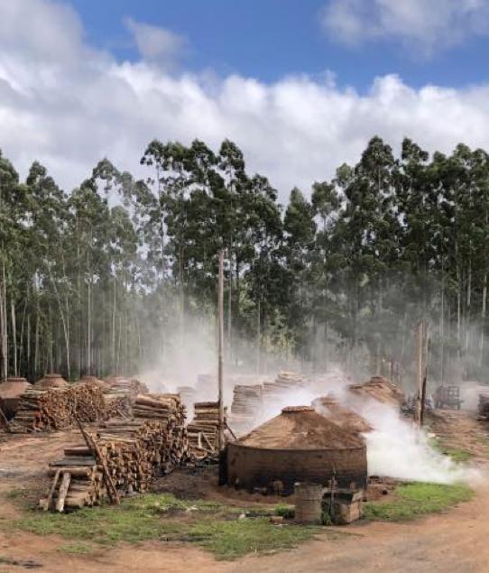 Eco Trade Group | ecotrade group chi siamo carbonaie 4